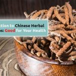 introduction-to-chinese-herbal-cordyceps